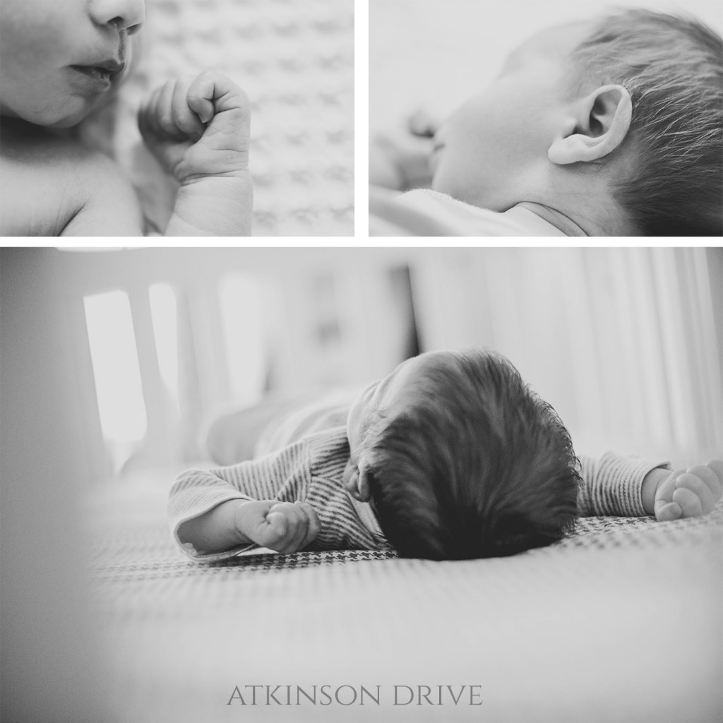 Newborn Photos | Atkinson Drive